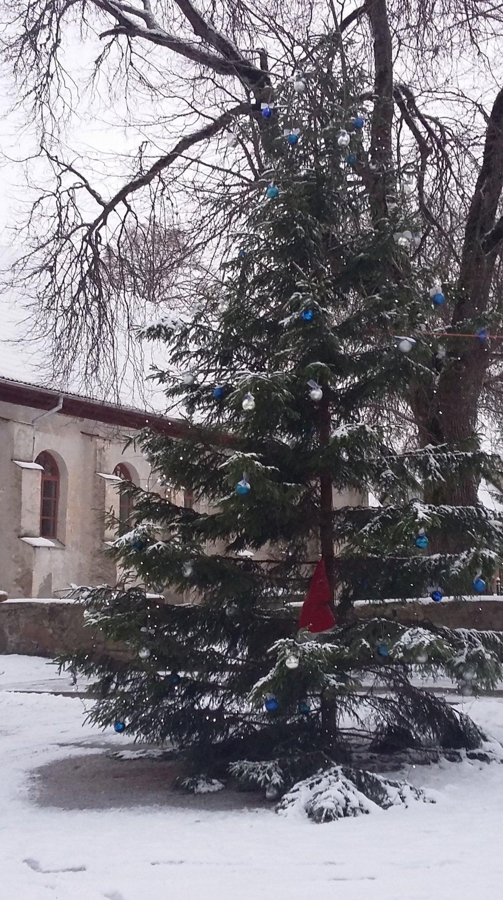Это фиаско, братан! Топ-10 самых некрасивых новогодних ёлочек Латвии
