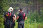 Jau vairāk kā 110 stundas ugunsdzēsēji cīnās ar meža un kūdras ugunsgrēku Valdgales pagastā
