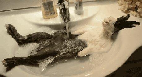 Mmm, vannas...