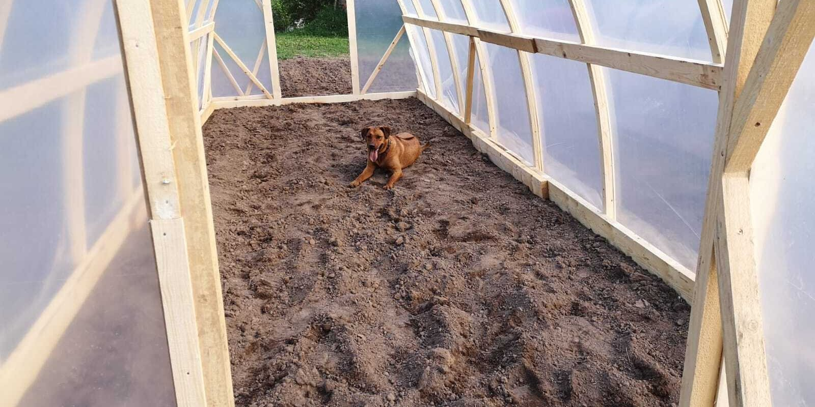 Почва, грядки, система полива. Как оборудовать теплицу