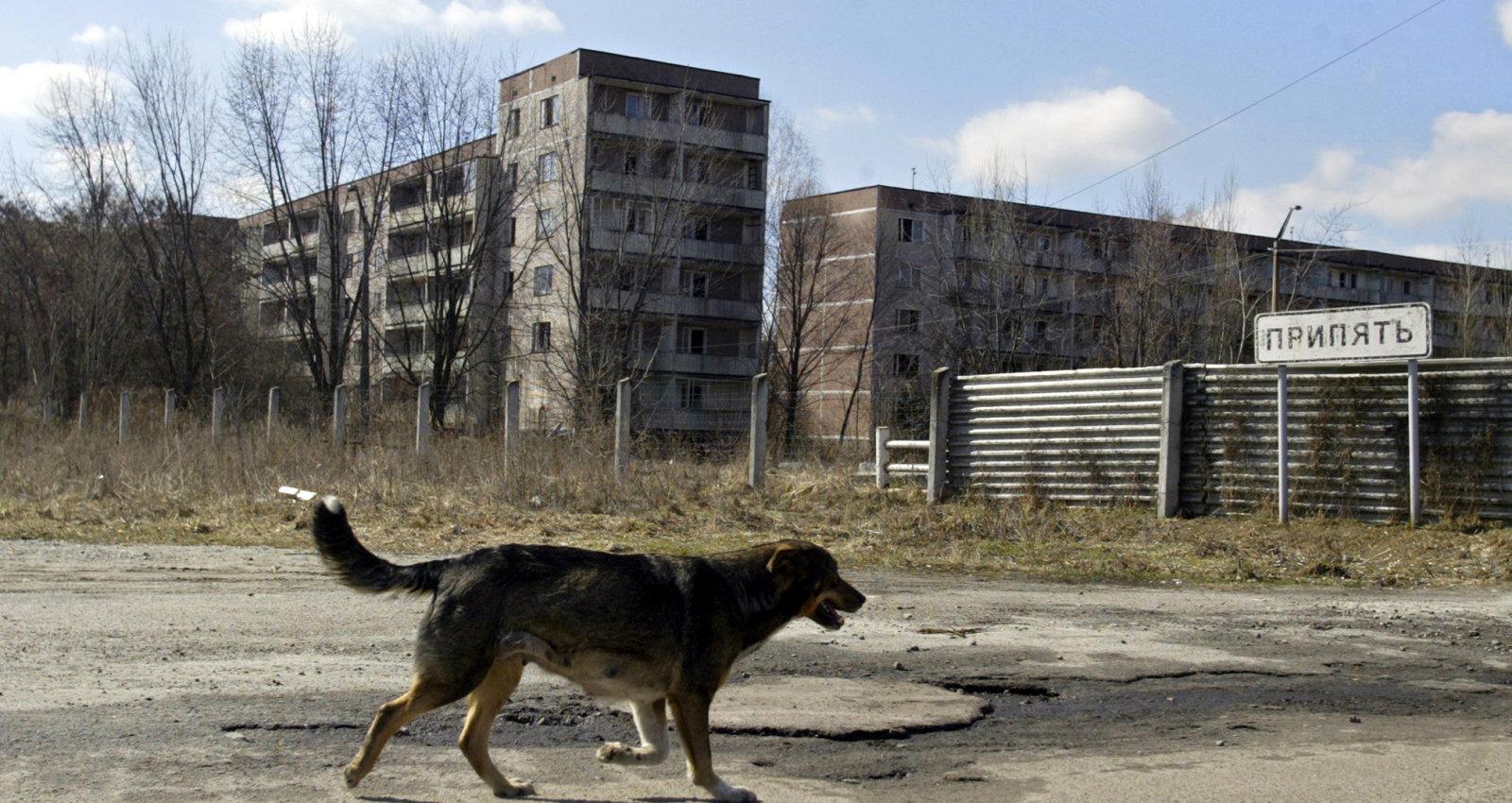 Atslepenoti VDK dokumenti: Ietiepīgus Černobiļas iedzīvotājus neizdodas pārvietot pat ar spēku un rupjību