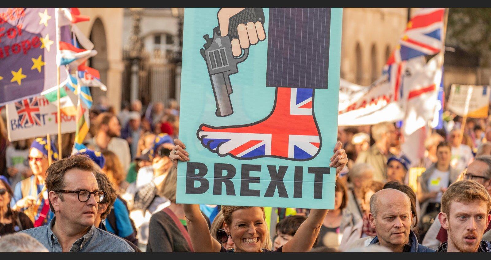 Britu problēmas: 'Brexit' īpatnējais nacionālisms, kašķi ar Eiropu un labumu zaudēšana