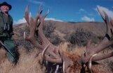 Lauvu medībās Dienvidāfrikā bojā iet Horvātijas pilsonis