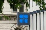 ОПЕК отказала России в заморозке нефтедобычи вместо сокращения