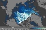 Video: Kas 27 gadu laikā atlicis no Arktikas ledus laukiem?