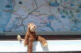 Ukraina sašutusi par olimpisko spēļu rīkotāju ģeogrāfiskām zināšanām