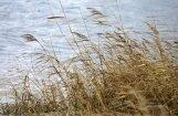 Lubānā un Aiviekstē saglabājas augstākais ūdens līmenis kopš 2013. gada paliem