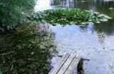 Фенолог: Мой пруд предсказал холодную и снежную зиму