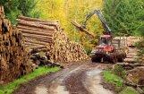 Latvijas ekonomikai trešajā ceturksnī pamatīgs kāpums
