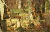 Павлютс собирается работать до гробовой доски