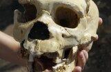 Расшифрована древнейшая ДНК: в доисторической Европе скрещивались два вида людей