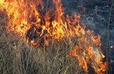 Во время учений на полигоне в Адажи загорелся лес: площадь пожара— 300 га