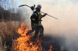Спустя сутки удалось локализовать пожар на Адажском полигоне