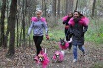 Foto: Kā 77 suņuki devās spēku pārbaudē orientēšanās sacensībās Juglā