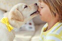 Mazi bērni – riska grupa saskarsmē ar bailīgiem suņiem
