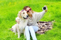 Piemērotākās suņu šķirnes aktīvajiem, slinkajiem, nogurušajiem un stresainajiem