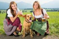 Mīts vai patiesība: alus sunim nav kaitīgs