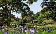 10 skaistākie pasaules dārzi