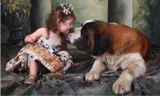 Pasaulē lielākie suņi – draudzīgi rotaļu biedri un uzticami sargi