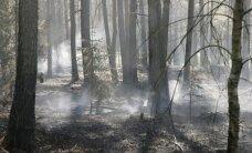 Brīdina par sevišķi augstu ugunsbīstamību mežos un stipru karstumu