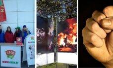 9 октября. Как белорусы выбирают Батьку, скандальная выставка, хулиганы против муниципалов