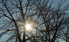 Otrdien Latvijā uzspīdēs saule; gaisa temperatūra turēsies zem nulles grādu atzīmes