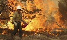 Milzīgo mežu ugunsgrēku pie nacionālā parka Kalifornijā izraisījis mednieka ugunskurs