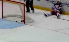 kurjoza ripa hokejs, AHL