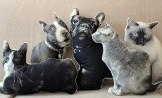 Dzīvnieciski dīvāna spilventiņi jeb Ideja, kā iemūžināt savu četrkājaino draugu