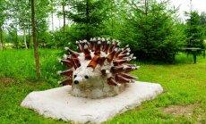 """ФОТО. Ёжик, мост, собачья будка — объекты уникального """"бутылочного сада"""" под Гулбене"""