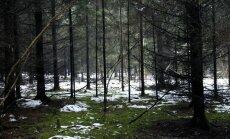 Puse LVM reģionu zaudējuši prestižo FSC mežu apsaimniekošanas sertifikātu