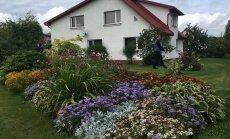 Sakopti dārzi jebkurā sezonā – Kocēnu novadā šogad atzītie īpašumi