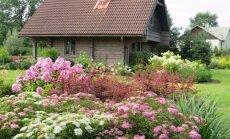 Siguldas dārzi pilnā krāšņumā: foto atskats uz novada sakoptākajiem īpašumiem
