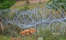 ASV nosoda Krieviju par robežžogu būvēšanu Abhāzijā un Dienvidosetijā