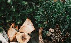 Lielā Ziemassvētku zīlēšana – dažādi paņēmieni, kā noskaidrot nākotni