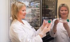 Konkursā aicina atsaukties sievietes - zinātnieces 6000 eiro vērtas stipendijas ieguvei