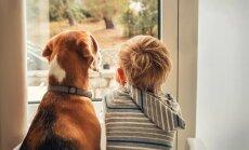 Bērns pirmo reizi viens pats mājās - neiroloģe akcentē psiholoģiskos un praktiskos aspektus