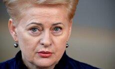 Грибаускайте: ЕС и НАТО согласуют ответ для России по отравлению Скрипаля