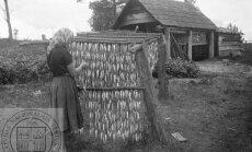 Ko latvietis ēda senāk. Trešais stāsts – gaļa, zivis, sēnes un savvaļas augi