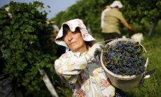 Ukraiņi un gruzīni uz ES bez vīzām varētu doties jau šogad