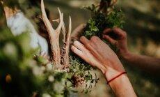 Soli pa solim: kā izgatavot pavasarīgu vainagu mājai no meža veltēm