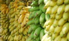 Vēstures noslēpumi: kāpēc hipiji pīpēja banānu mizas