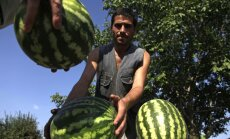 ЕСПЧ обязал Россию выплатить 2,5 млн евро молдавским фермерам и силовикам