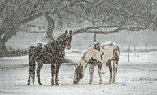Pirmssvētku nedēļā saglabāsies mainīgs laiks; Ziemassvētki būs sniegoti