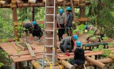 Ķegumā atkal uzceltas platformas kokos, ko var gan apskatīt, gan tajās nakšņot