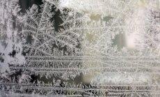 Фенолог: Пришел владыка зимы. Январь сперва будет теплым, затем - морозы до -20