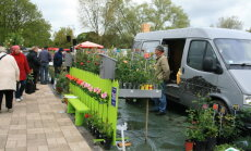 Salaspils botāniskajā dārzā notiks ikgadējais stādu gadatirgus