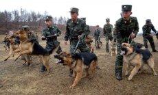 Ziemeļkorejas spriedze: Lielbritānija aicina uz savaldību un mieru