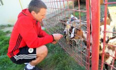 Foto: Latvijas telpu futbolisti pirms gaidāmās spēles ar Somiju apciemo zoodārza zvēriņus