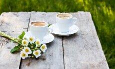 Nedienas ar ziedputekšņiem – kā iztīrīt uz mēbelēm atstātās pēdas